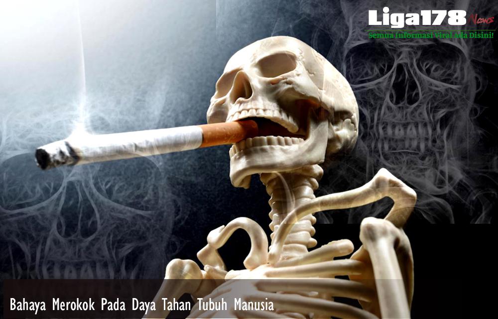 Bahaya Merokok Pada Daya Tahan Tubuh Manusia