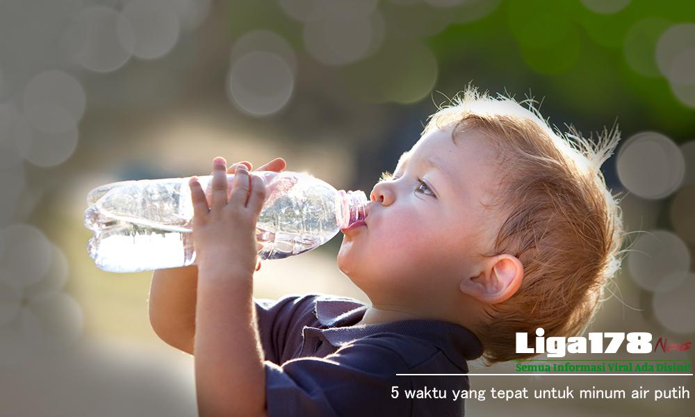 Air Putih, Manusia, Dehidrasi, Liga178 News
