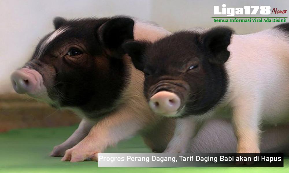 China, Daging Babi, America Serikat, Libur Natal, Liga178 News